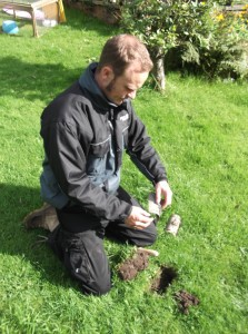 setting traps for moles